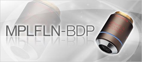 MPLFLN-BDP Semi Apochromat Color Correction Polarized, DIC, Brightfield and Darkfield Objective Lenses